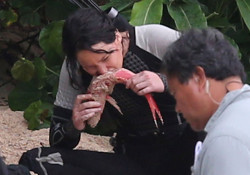 Jennifer Lawrence eating on the set of Hunger Games