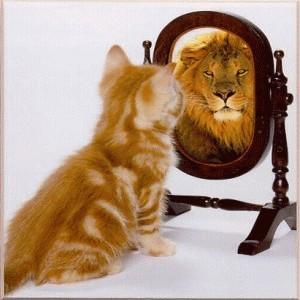 Cute Cat Looking In Mirror, Sees Lion