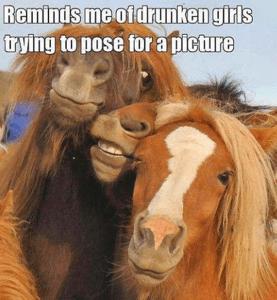 Drunk Girls look like horses