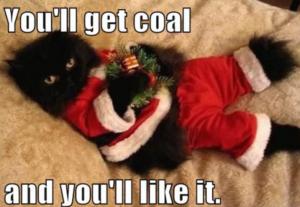 Santa-Cat-Coal