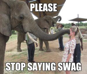 Elephant-Funny