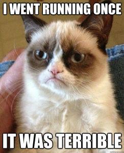 angry-cat-running
