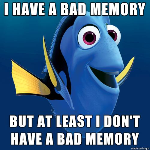 dory-memory-bad