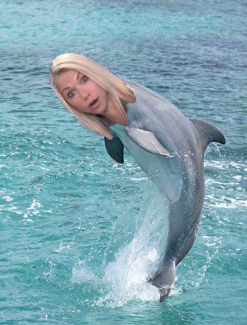 baby-dolphin-gigi-eats
