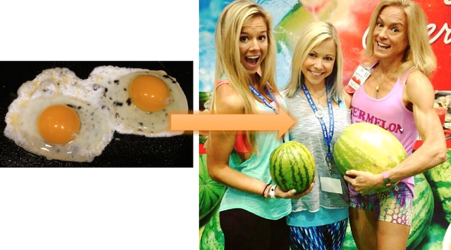 From Eggs To Melons Fresh Fit N Healthy GiGi Eats Celebrities The Fit Fork