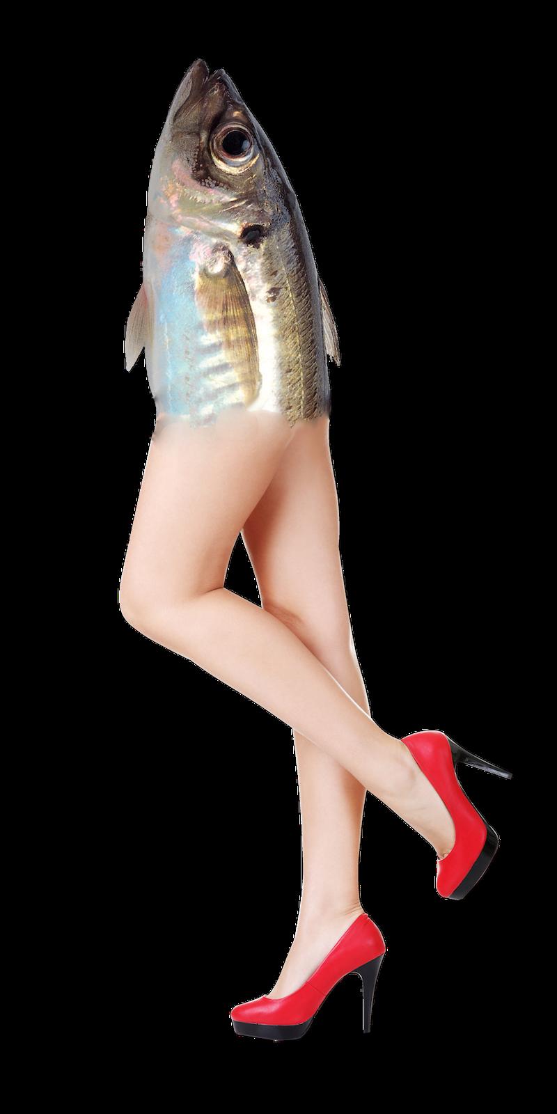 fish_legs