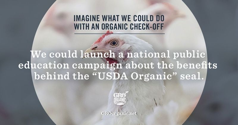 organic education