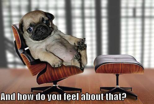 therapist_puppy