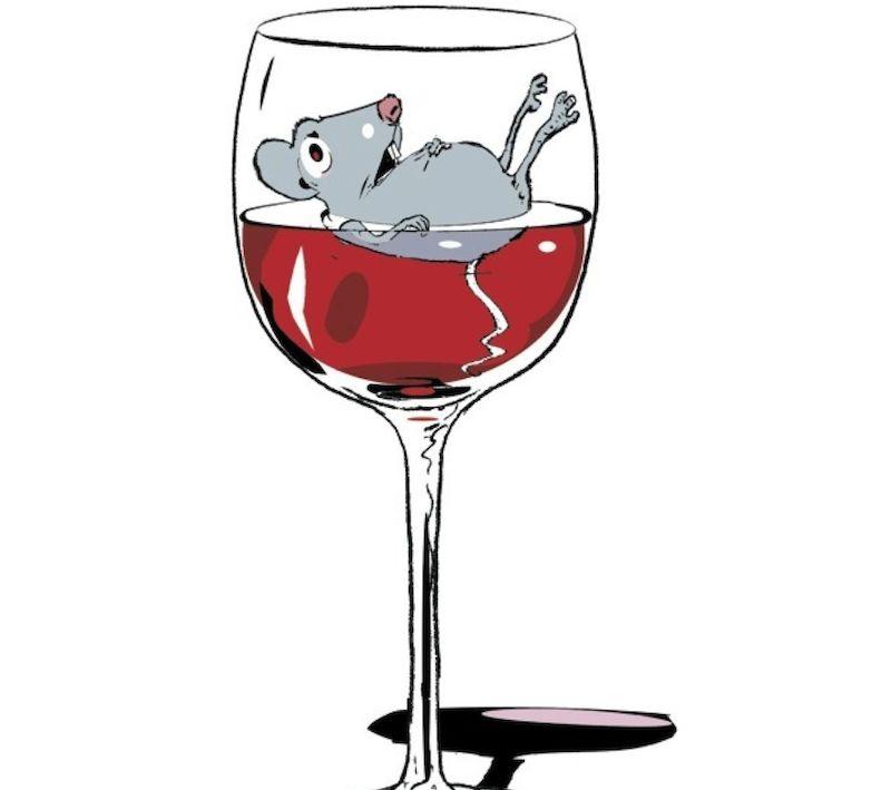 rat piss wine