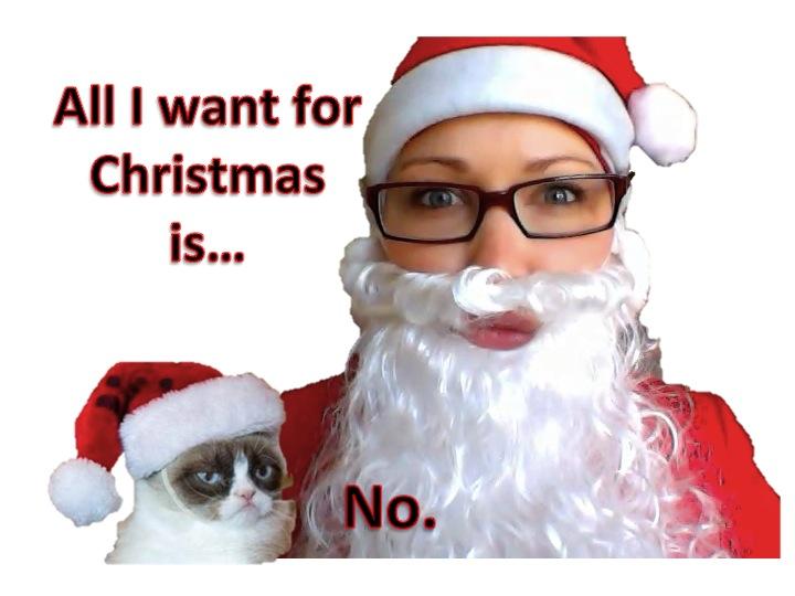 Grumpy Cat and Santa Claus