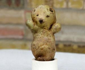 potato bear