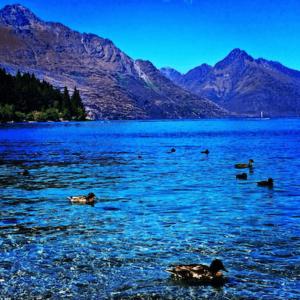 Queenstown New Zealand Lake