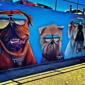 Street art at Bondi Beach
