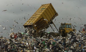 landfill-site-in-mucking-001