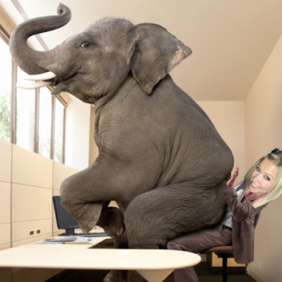 Addressing the LARGE Elephants In The Room