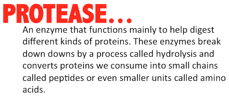 what is protease