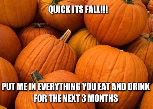 how much pumpkin pie spice do i use