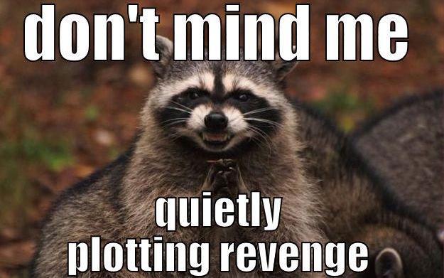 plotting revenge