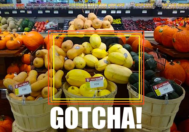 squash - spaghetti squash, pumpkin, gourds