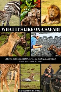 We're Not Tuckered Out… Part Two Of Our Safari in Africa